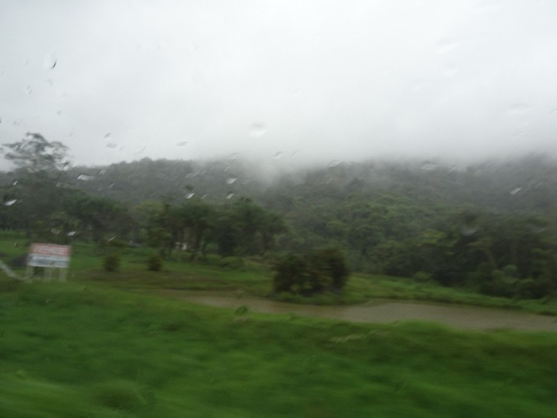 Typical view from bus window on Curitiba to Ilha do Mel embarcation point - weather inclement!