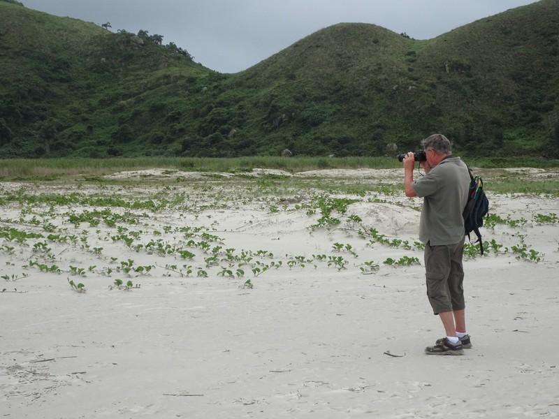 Taking photos of birds at Praia do Boia