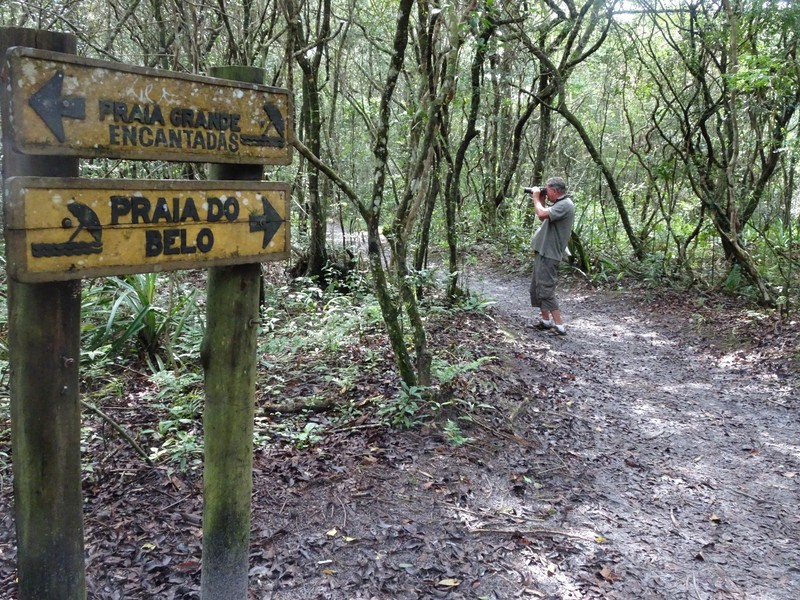 Trail from Brasilia to Praia Grande