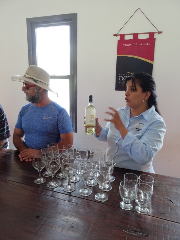 Domingo Hermanos Bodega - wine tasting