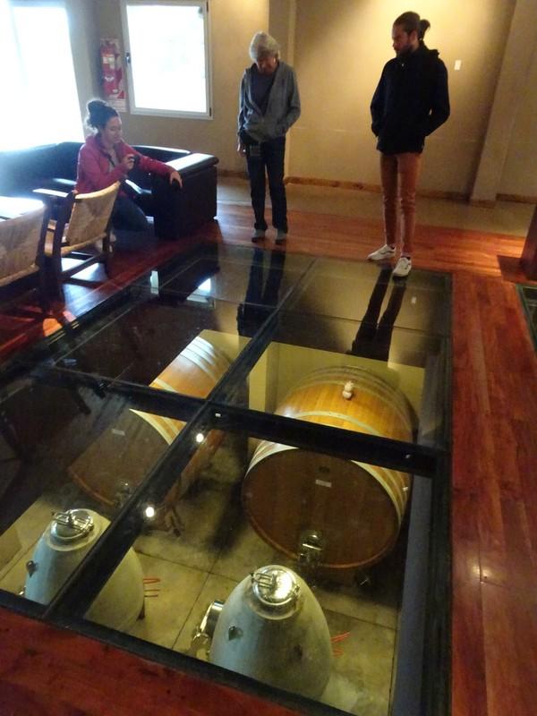 Trapiche Bodega - tasting room