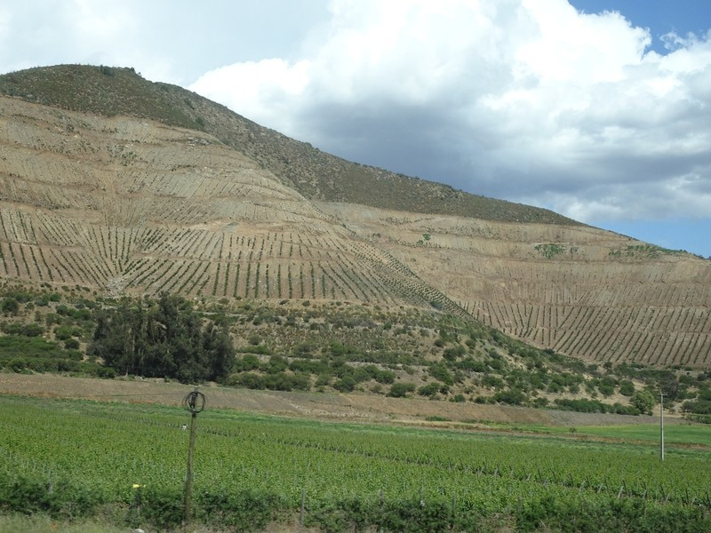 Mendoza to Valparaiso - down from the mountains in Chile - they are planting vines right up into the hills