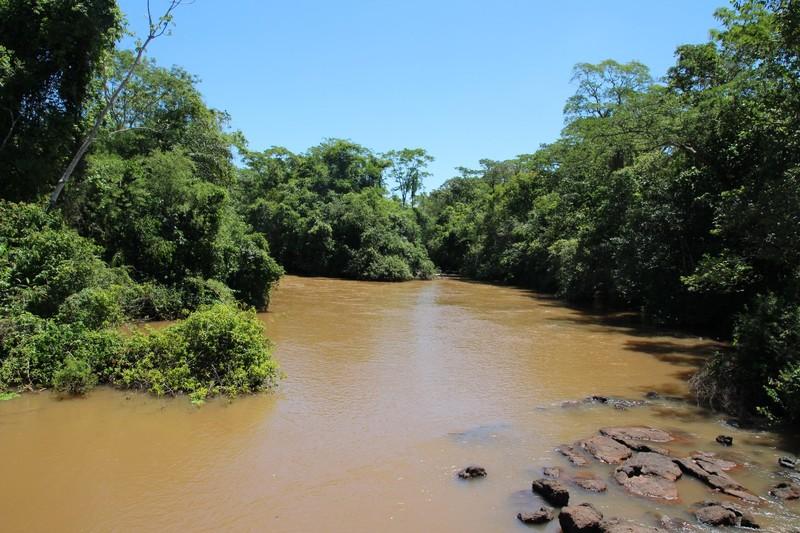 Iguazu Falls Argentina - Circuit Superior - upstream from Bossetti falls