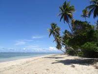 Boipeba island - beautiful, relaxed, paradise!