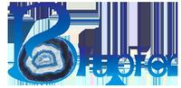 Blupier logo