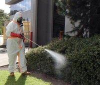 Pest control craigieburn