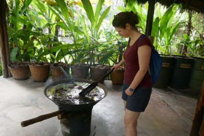 Boiling elephant dung to make paper