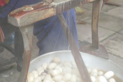 Silk extraction