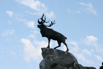 somme - stag