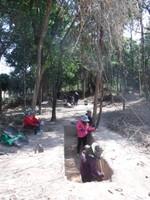 New Site Excavation