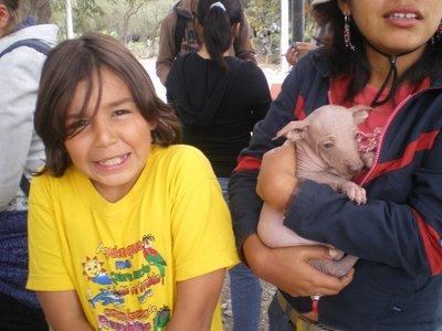 brel___peruvian_dog.jpg