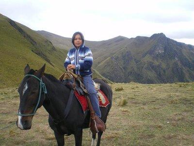 caballo_5_Quito.jpg