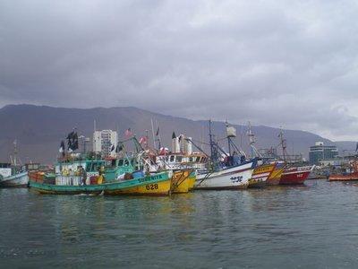 iq_boats.jpg