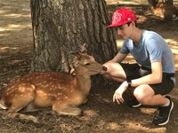 Boy and Deer in Nara
