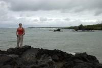 Volcanic black rocky beach, Isabela Island