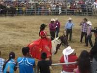 One of the 'Queen of the rodeo' contenders, Rodeo Montubio