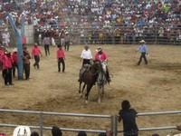 Calming down a horse, Rodeo Montubio