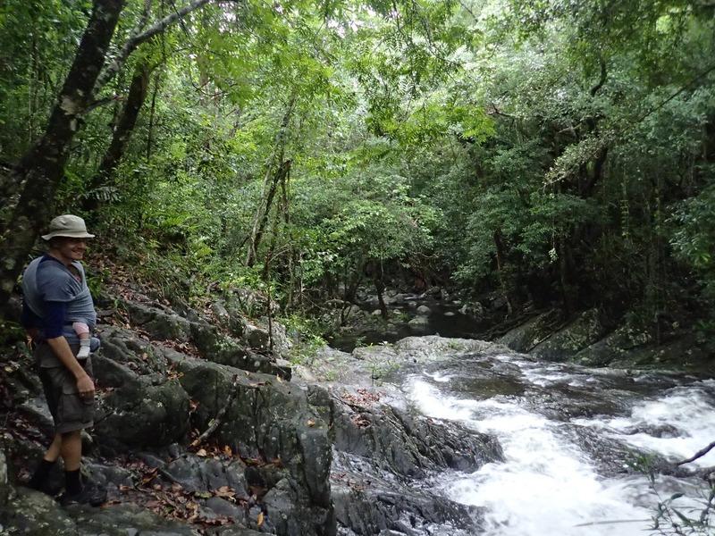 Vandring längs creeken