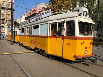 Heritage trams at Kossuth Lajos tér
