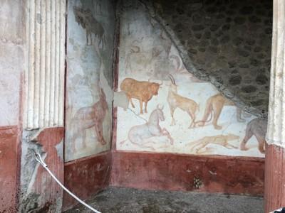 Animal mural in Pompeii house