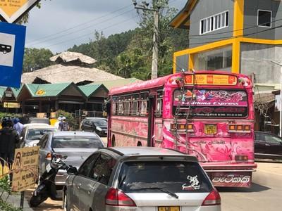 Pink bus at Ella