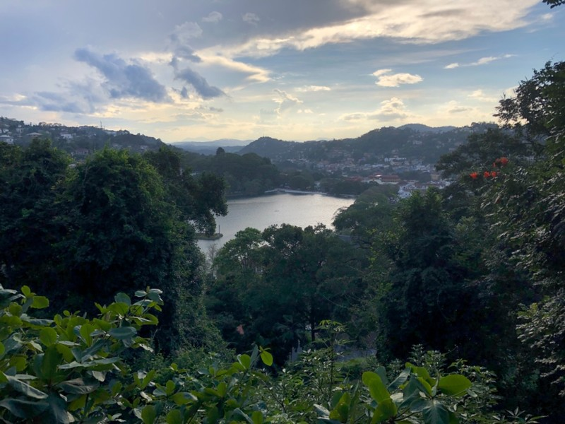 Kandy from Udawattakelle Forest Reserve