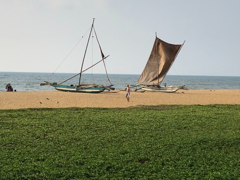 Traditional boats on Negombo Beach