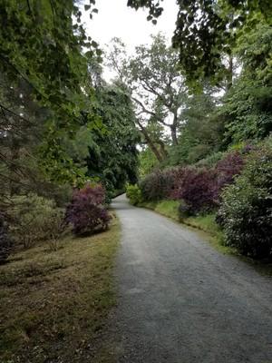 Penrhyn_gardens2.jpg