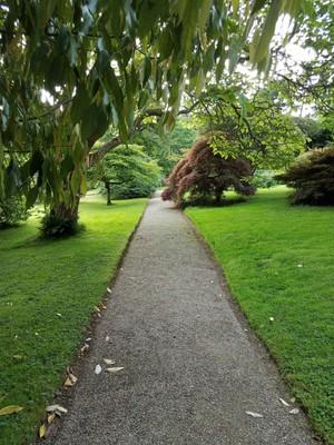 Penrhyn_gardens8.jpg