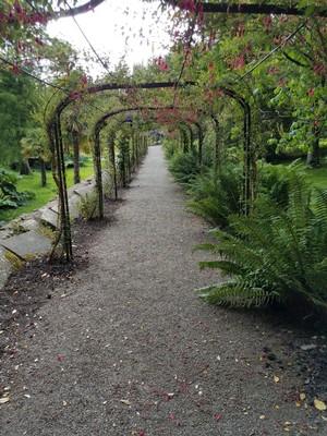 Penrhyn_gardens9.jpg