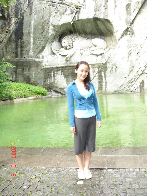 Lucerne with Lion Monument