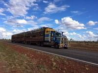 Roadtrain 1