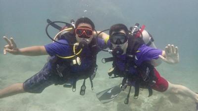 Diving in Koh Tao