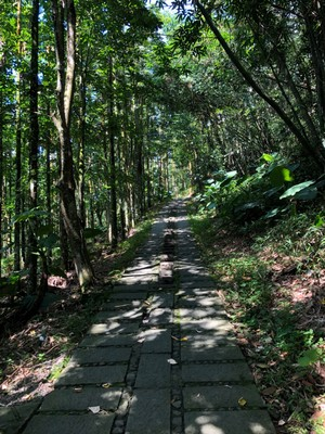 Hike path to the pagoda