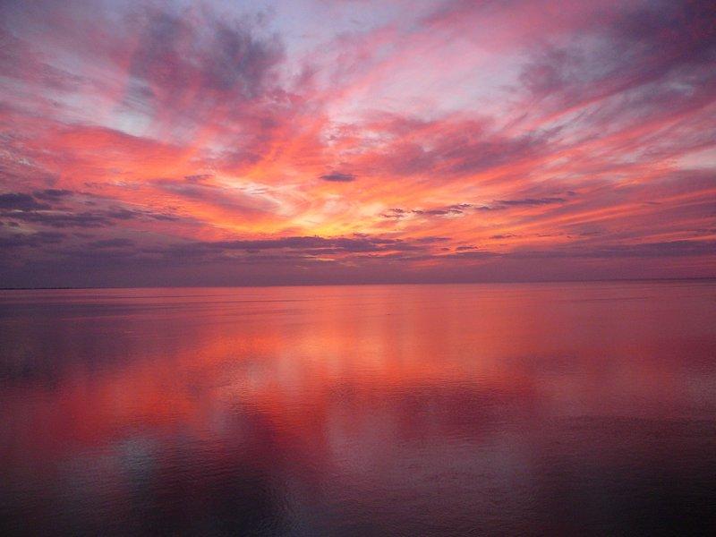 Red Rose sunset
