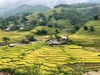 Trekking in Sapa - Vietnam