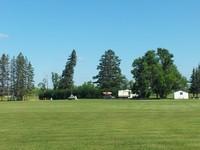 Sifton Park 3
