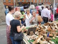 Kerrie looking at those mushrooms