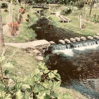 Petit ruisseau sur le chemin