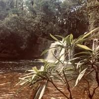 Cascade (Fin del mundo)