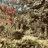 Nature à Jardín