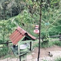 La maison des colibris
