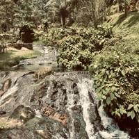 Cascade et nature