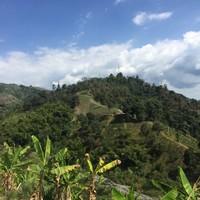 Vue sur les montagnes depuis l'hacienda