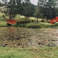 Jardin japonais (Recinto del Pensamiento)