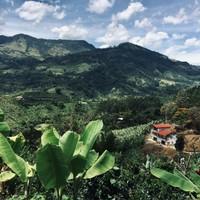 Montagnes de Jardín