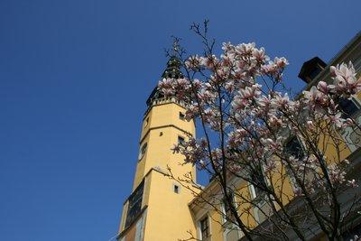 Bautzen_s_town_hall.jpg
