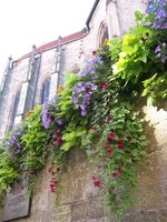 Plantings by church