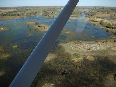 Okavango-overflight.jpg