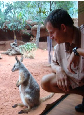 Sydney1---..Wallaby.jpg
